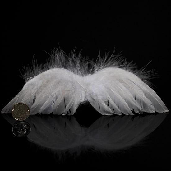 Real Angel Wings   New Calendar Template Site