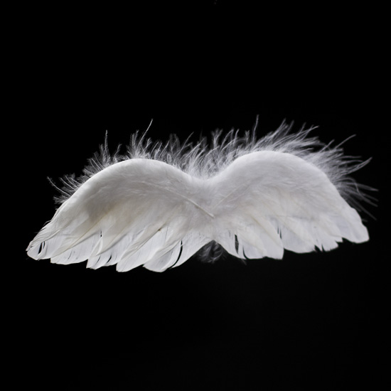 White Real Feather Angel Wings Angel Wings Doll