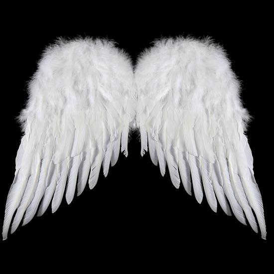 Картинка крылья ангела