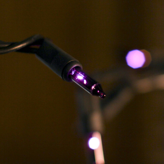 Purple String Lights Black Cord : Purple Bulb and Black Cord String Lights - Fall and Halloween Sale - Sales