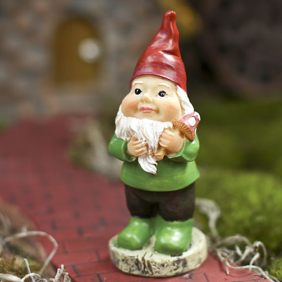 Image Gallery Miniature Gnomes