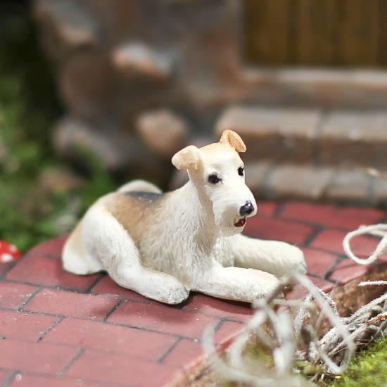 Buy A Wire Fox Terrier