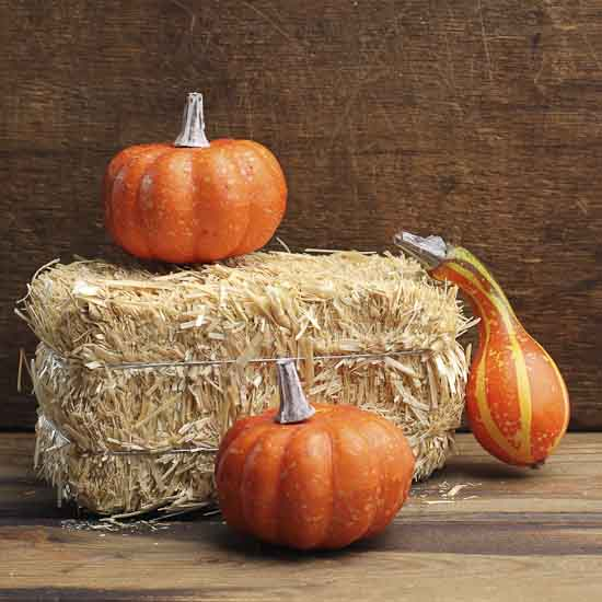 miniature natural straw hay bale - western theme
