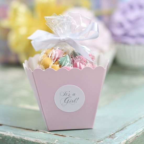 girl baby shower favor kit it 39 s a girl theme baby shower baby