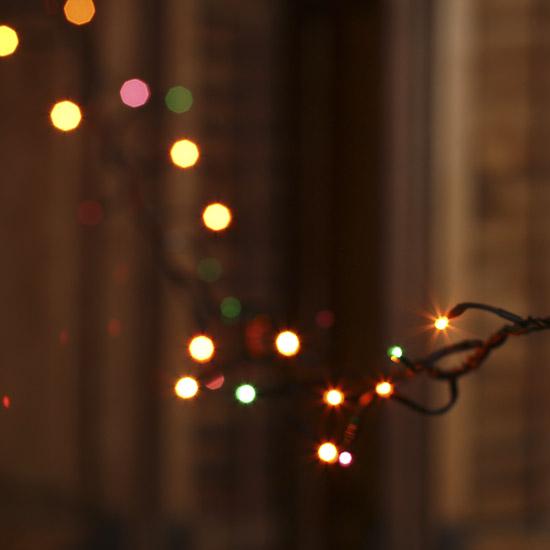 Single Color String Lights : Halloween Bulb Black Cord Multifunctional Teeny String Lights - Lighting - Christmas and Winter ...