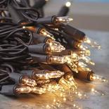Clear Bulb and Brown Cord String Lights
