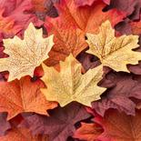Realistic Autumn Artificial Maple Leaves
