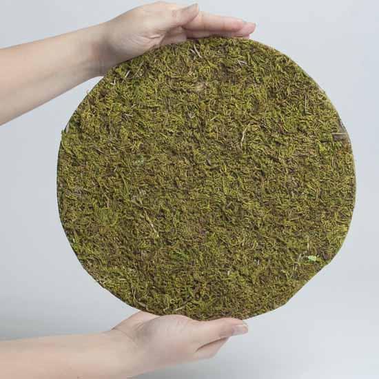 Drieds + Natural Botanicals