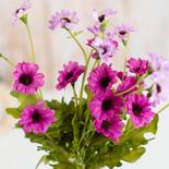 Purple Artificial Daisy Bush