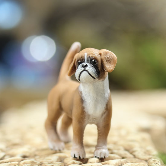 Miniature Boxer Puppy Fairy Garden Supplies Dollhouse