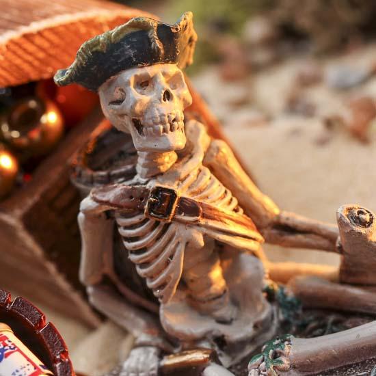 Miniature Pirate Skeleton What S New Dollhouse