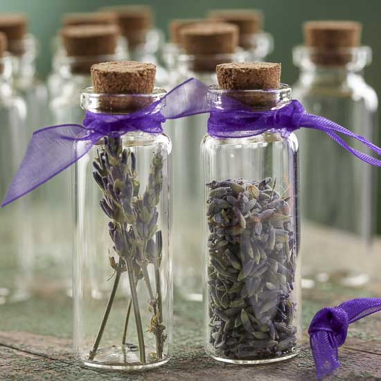 Slender Glass Bottles With Corks Decorative Containers