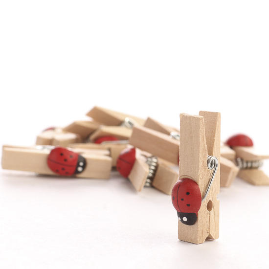 Small ladybug embellished wooden clothespins clothespins for Wooden craft supplies online