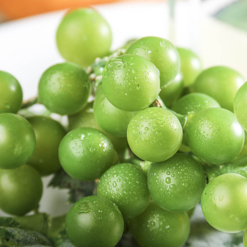 Artificial Green Grape Cluster Stem Picks Sprays