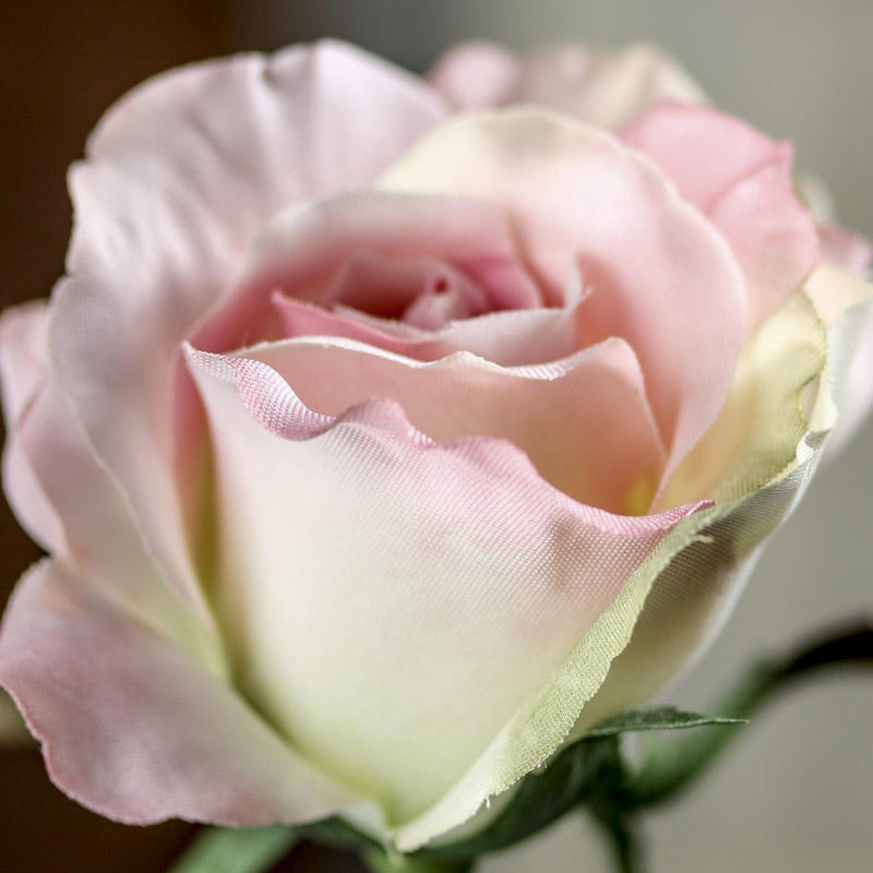 Pastel Pink Artificial Rose Stem Picks And Stems