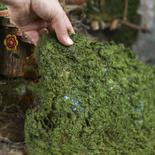 Artificial Moss Sheet