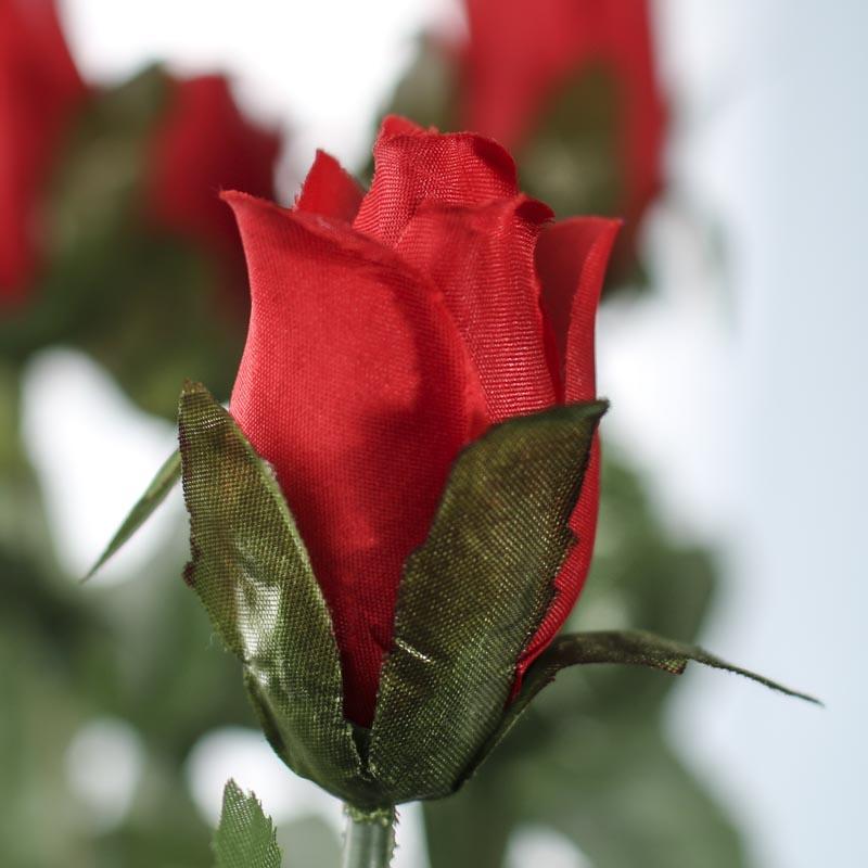 Red bud christian singles