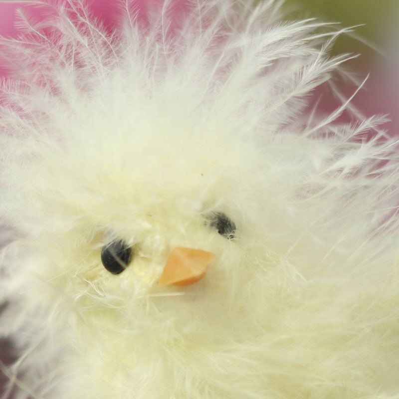 Feathered Baby Chick - Spring and Easter - Holiday Crafts