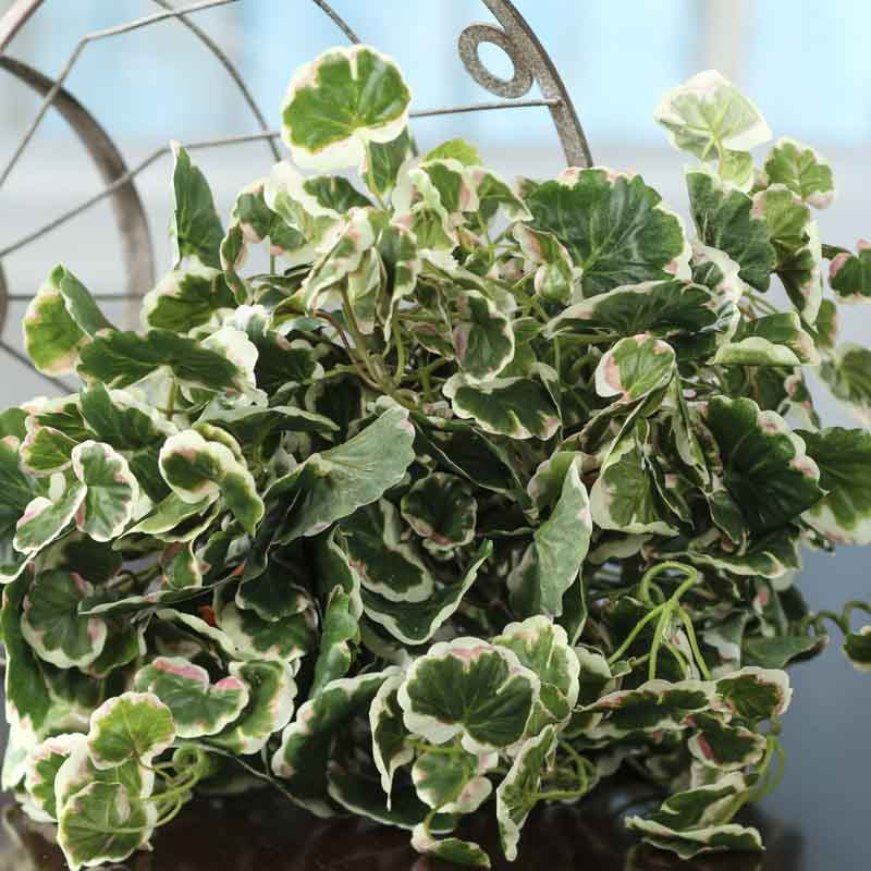 Variegated Artificial Leaf Bush Artificial Greenery