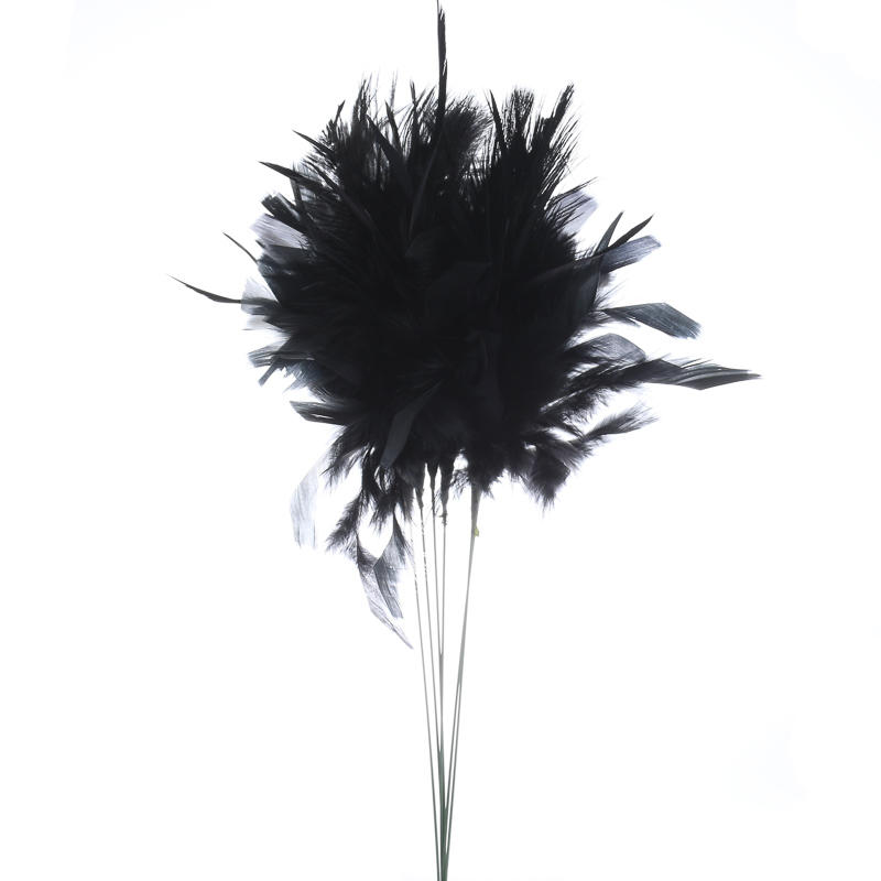 Black ostrich feathers - photo#18