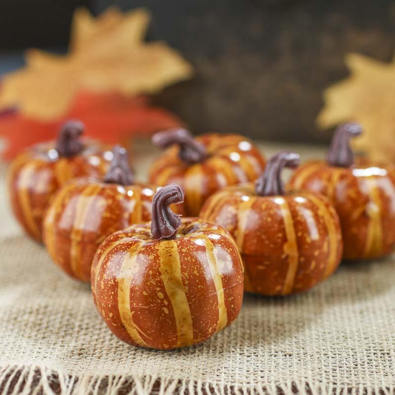 Small Dried Decorative Pumpkins 82