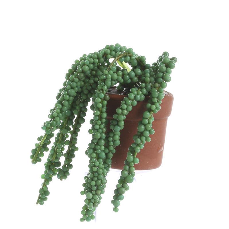 Dollhouse Miniature Potted Cascading Succulent Plant