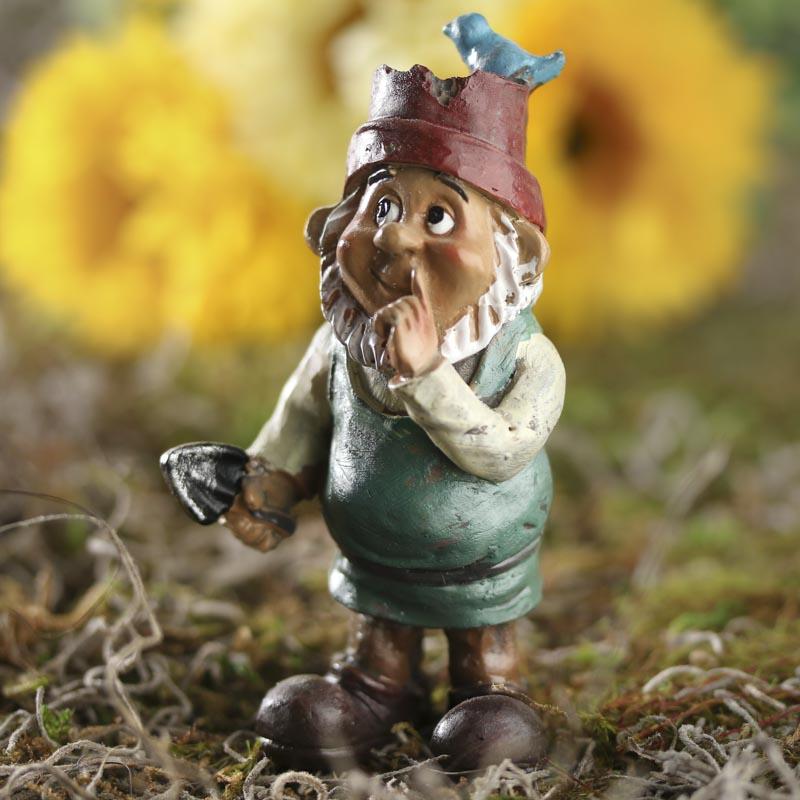 Gnome In Garden: Miniature Goofy Garden Gnome