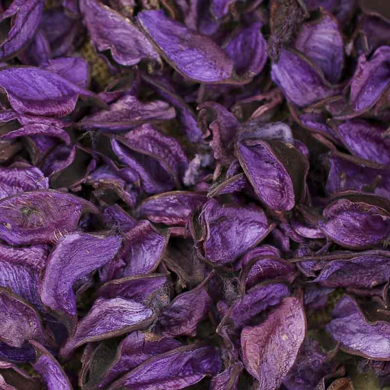 Dried Lavender Children S Craft