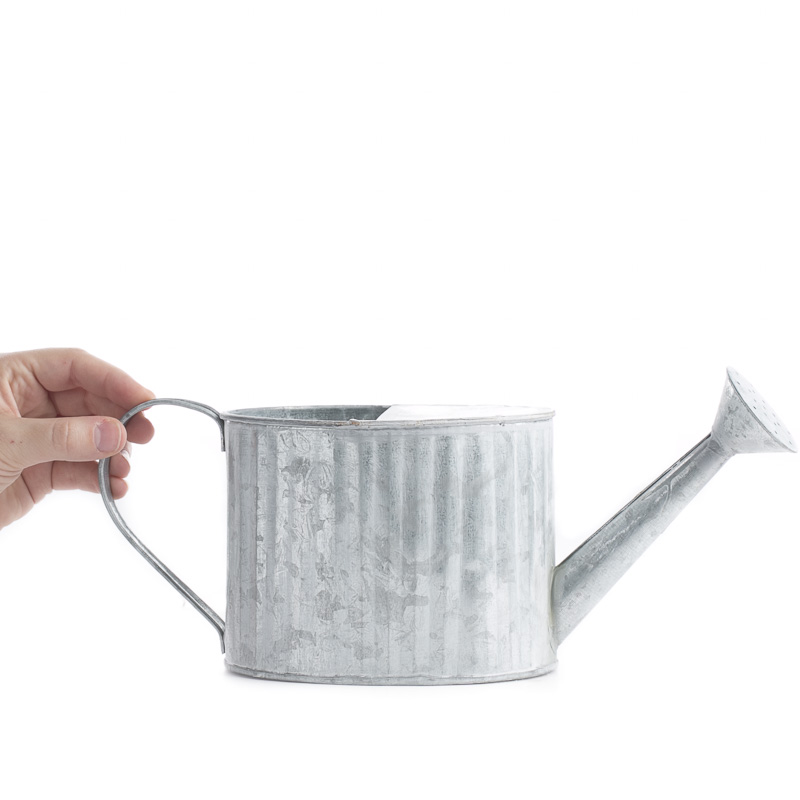 Galvanized Metal Watering Can On Sale Home Decor