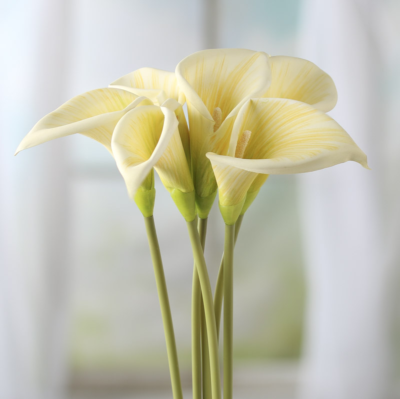 Cream Artificial Calla Lily Stems Picks And Stems Floral