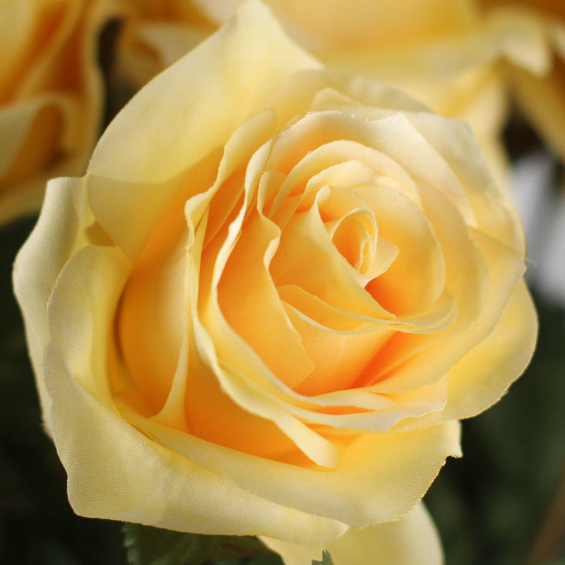 Light Yellow Artificial Long Stem Roses Picks And Stems
