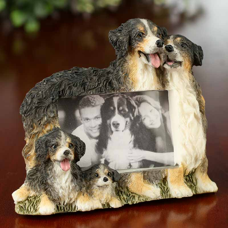 Small Bernese Mountain Dog Magnet Picture Frame Picture