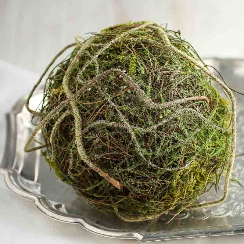 Natural Twig And Moss Grapevine Ball Vase And Bowl Fillers Home