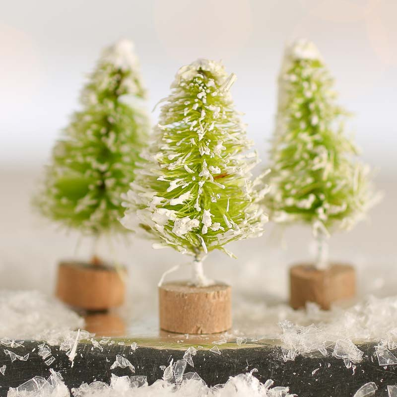 Home Depot Real Christmas Tree Prices: Miniature Frosted Lime Green Bottle Brush Trees