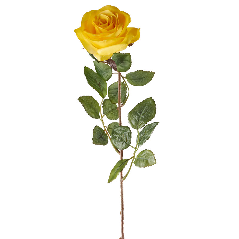 Yellow Rose Stem Picks And Stems Floral Supplies