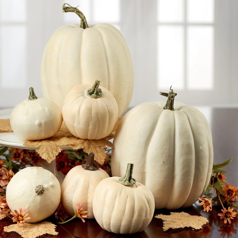 assorted harvest white pumpkins - beach theme wedding cards