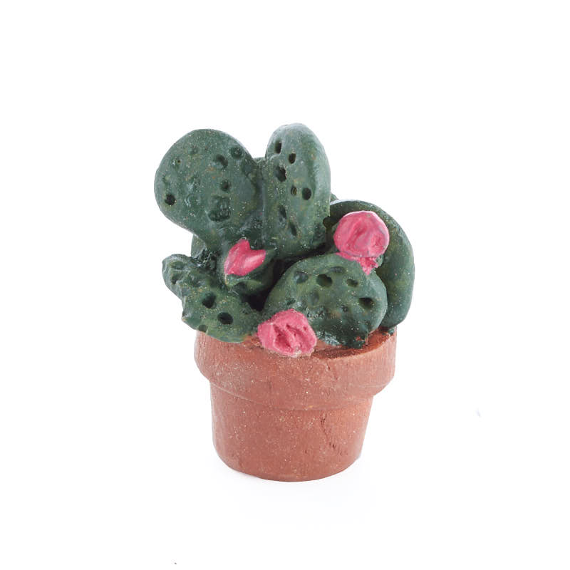 miniature potted flowering cactus miniature plants. Black Bedroom Furniture Sets. Home Design Ideas