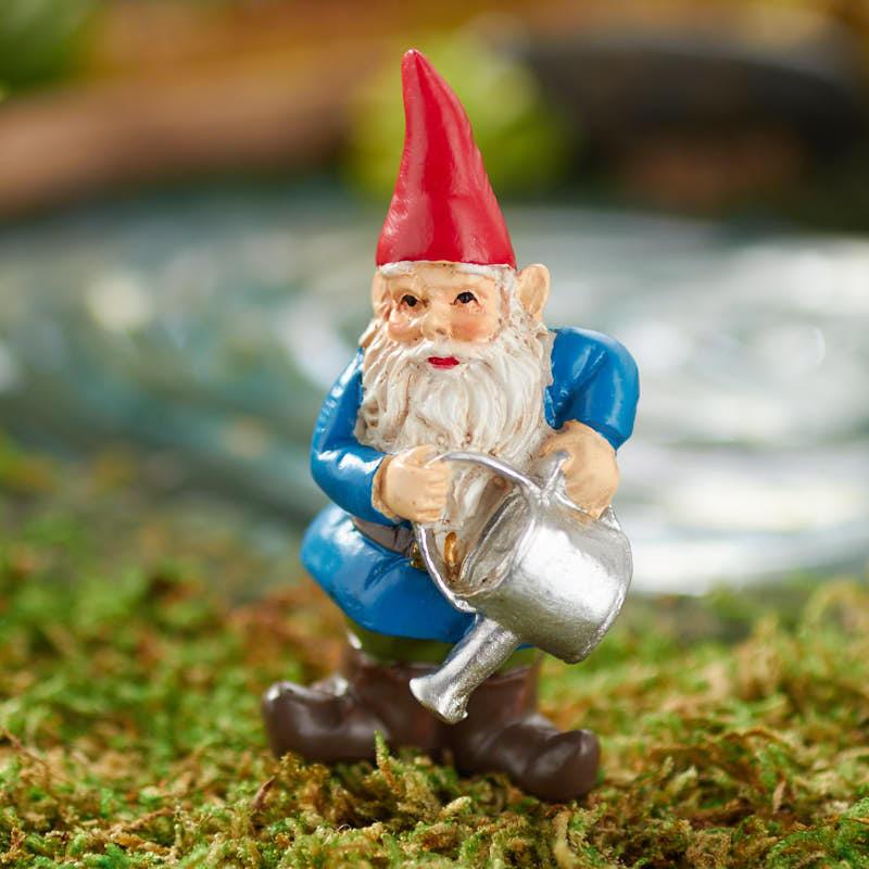 Gnome In Garden: Miniature Garden Gnome
