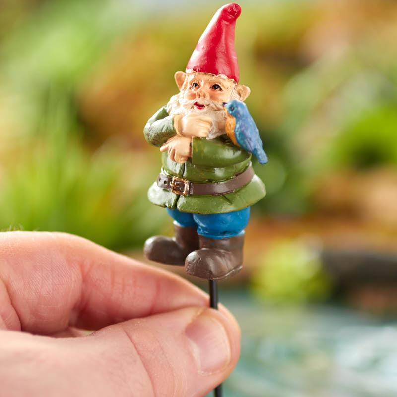 Gnome Garden: Miniature Fairy Garden Bird Gnome