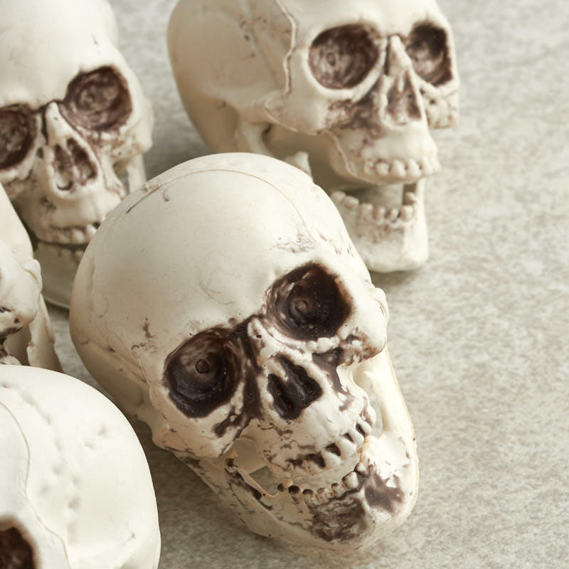 Mini Skeleton Skulls Bowl And Vase Fillers Fall And Thanksgiving Holiday Crafts