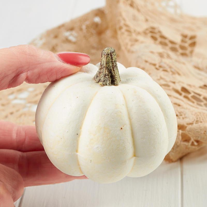 Small Dried Decorative Pumpkins 53