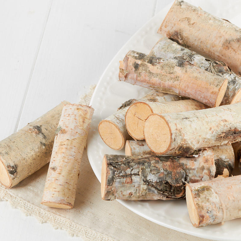 Miniature Natural Birch Wood Logs Vase And Bowl Fillers Home Decor