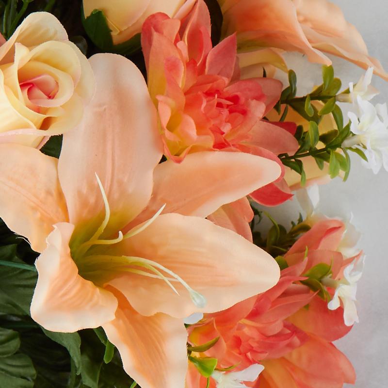 Orange Rose Bushes For Sale