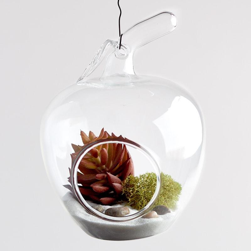 Glass Apple Terrarium Ornament - Christmas Ornaments ...
