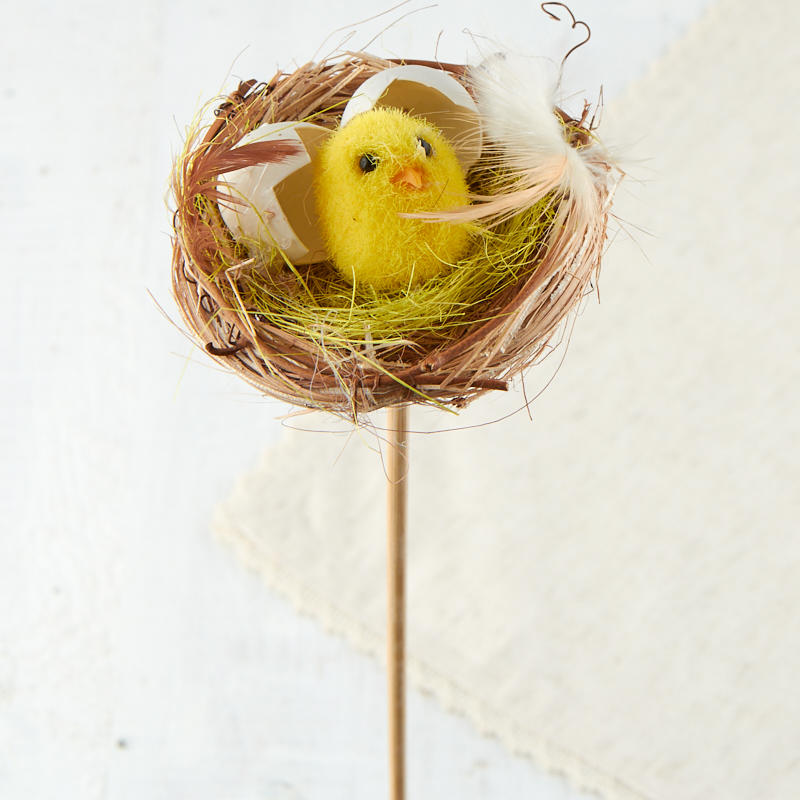 newly hatched chick in nest pick birds butterflies basic craft