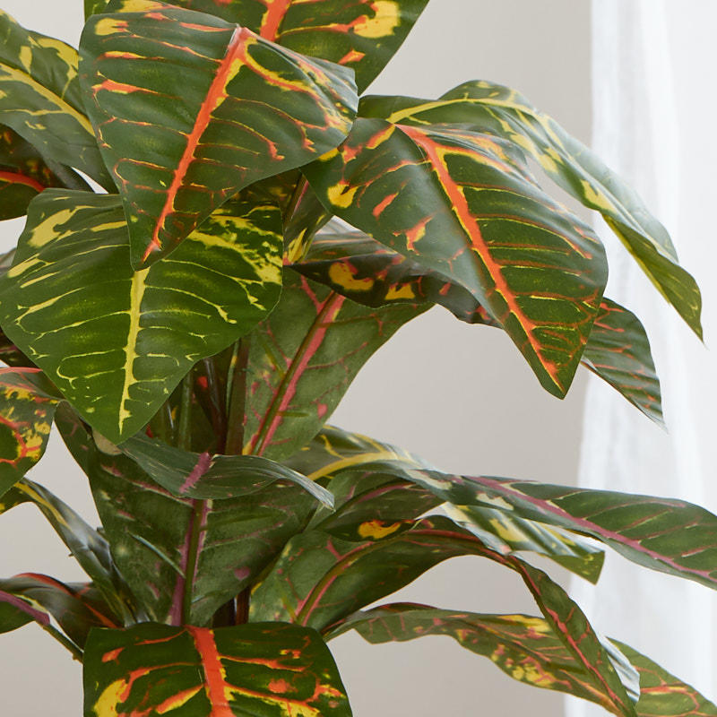 Artificial Croton Plant