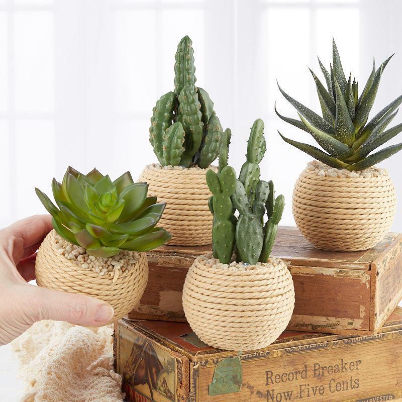 artificial succulent plant in pot table decor home decor. Black Bedroom Furniture Sets. Home Design Ideas