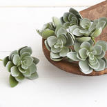 Dusty Green Artificial Hen and Chick Picks