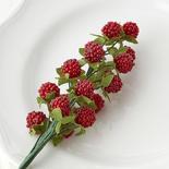 Beaded Raspberry Pick