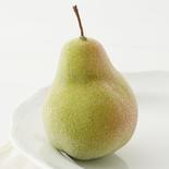 Tiffany Style Beaded Green Pear Fruit